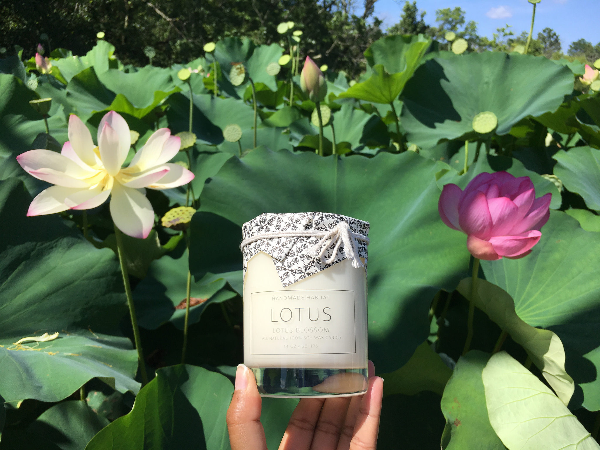 Handmade habitat summer lotus adventures mightylinksfo