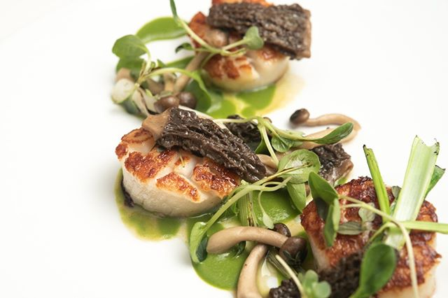 Earlier this week Chef Mendes and his team unveiled a few dishes for the spring menu including this: Diver Sea Scallops with morel mushrooms and spring green garlic