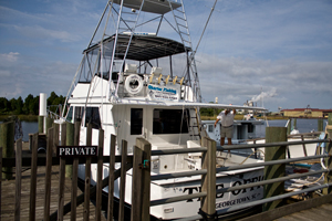 The Office Fishing Charters - Georgetown SC