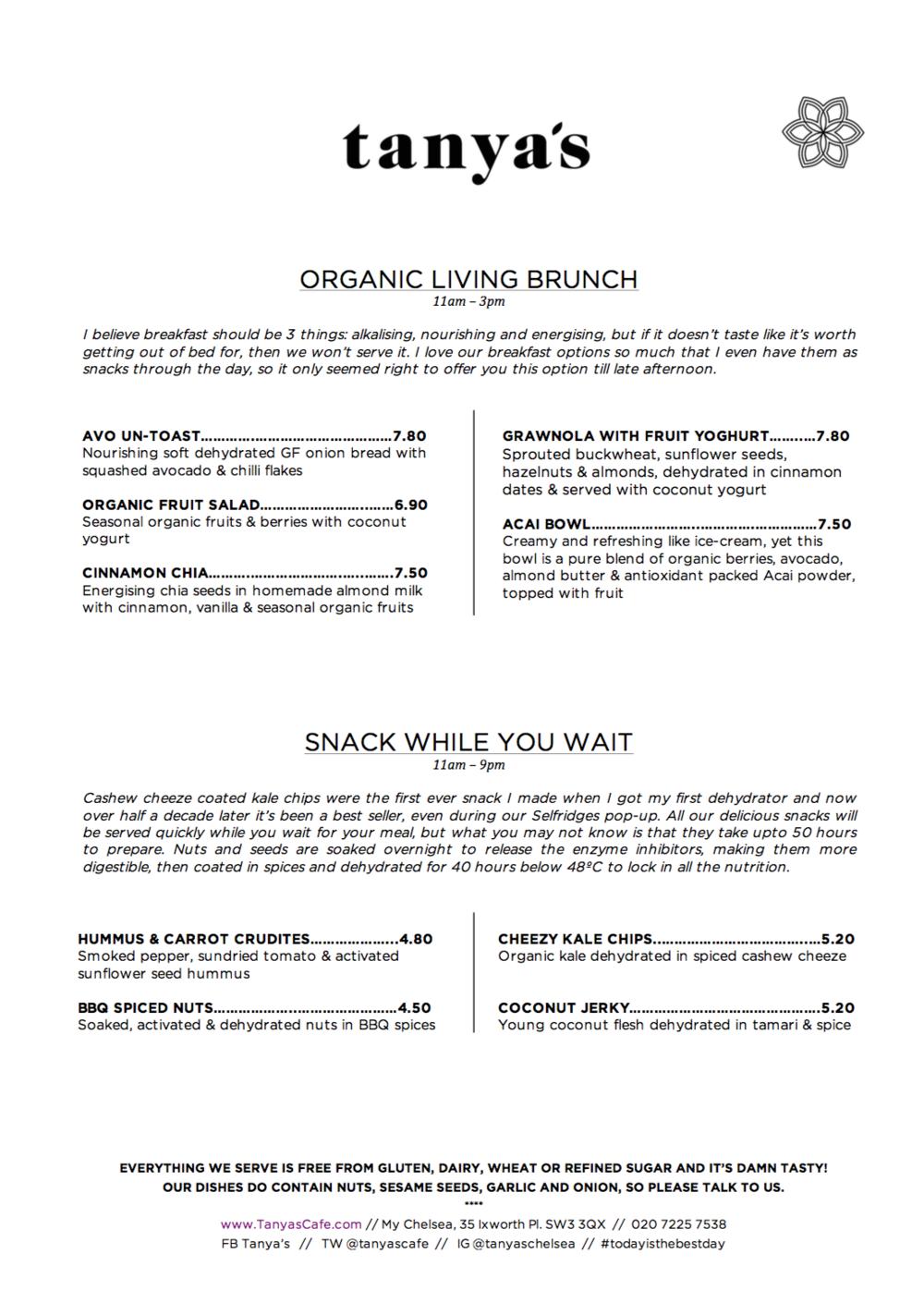 tanya's raw food menu 2