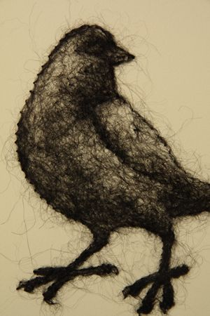 Blackbird by Stephanie Metz