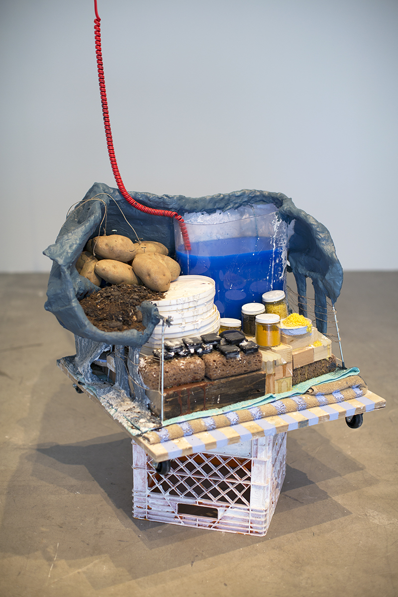 Valid Causations From an Elephant's Memory  Soil, potatoes, clay, and mixed media Dimensions variable