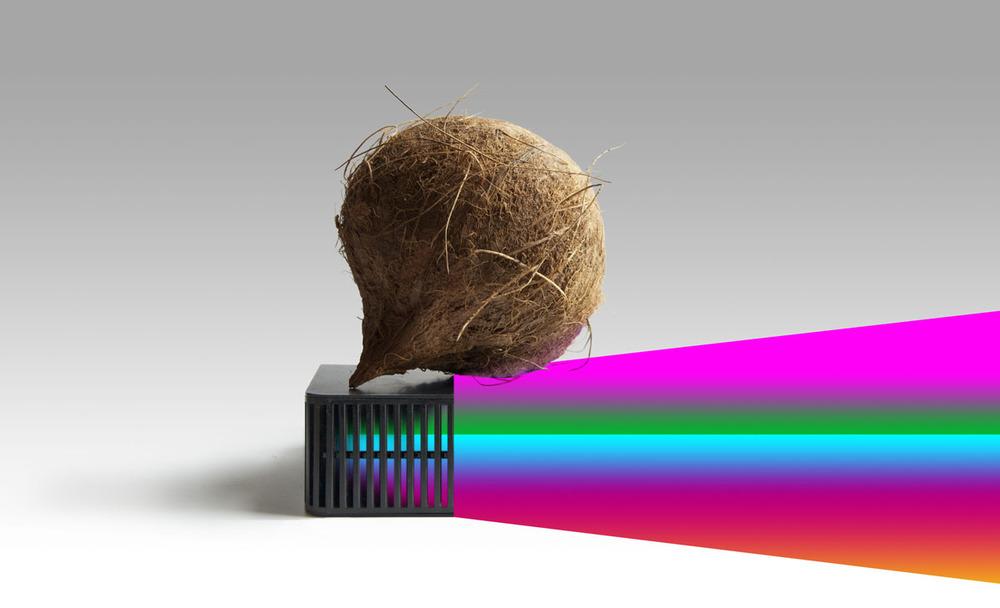 Hedges-For_Newton.jpg