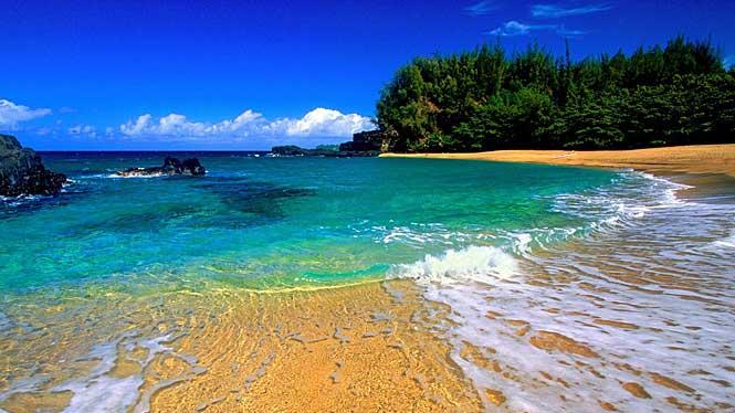 kauai-hollywood.jpg