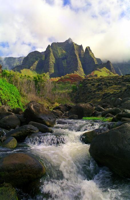 kauai 3 .jpg