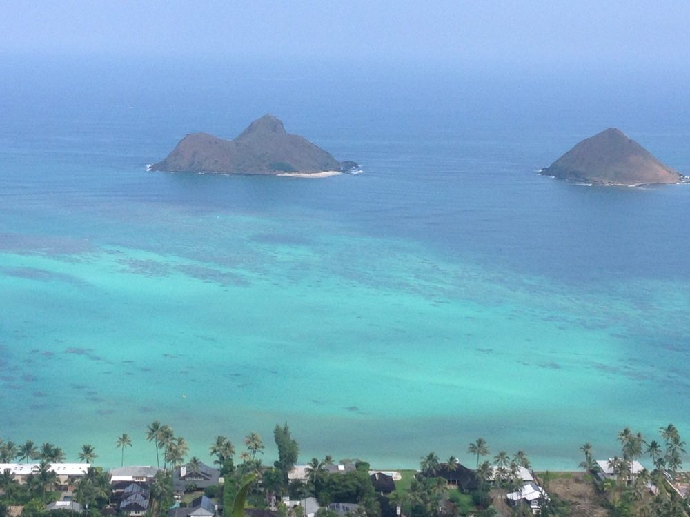 OAHU DAY TOUR or BY HOUR TOUR EXPLORE OAHU IN A PRIVATE TOUR ASK US, WE WILL HELP YOU CREATE IT! CHECK OUT OUR PANEL OF ACTIVITIESAND WE WILL PICK YOU UP AT YOUR CONVENIENCE.   - Private Island tour: Off-road adventure -Visit Pearl Harbor   - Circle Island Tour (Pearl Harbor + North Shore) -Hiking and Water Falls - Private Yacht Sailing - Snorkeling Tour - Outrigger Canoe Surfing/Kayaking - SUP (Stand up Paddle Board), Surf or Kite Surf Private Lessons -Customized/ Tailored Tours. Click here to see all the details of the trip.
