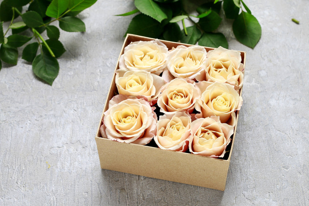 Beautiful and unique floral and flora packaging supplies and design services | GTI Industries Inc