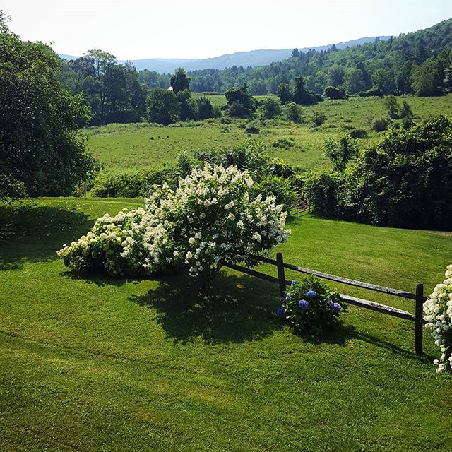 Good morning!  #berkshires #vacation #summer #rural #country #trees