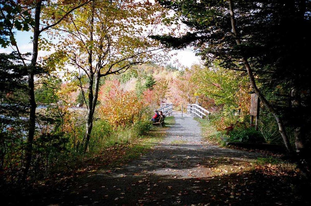 3-Oct19-Musquodoboit-Trail.jpg