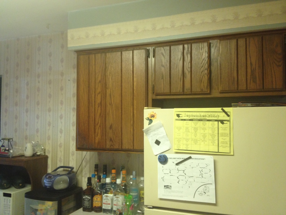 kitchen wall facing back of house.JPG