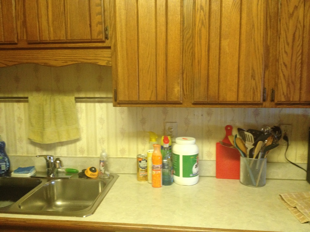 kitchen sink area and cabinets.JPG