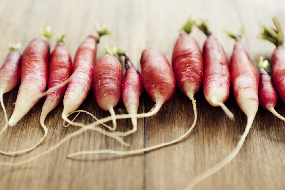 It's radish season and there are so many different varieties of radishes on the market. Here are some organic French breakfast radishes pictured here.