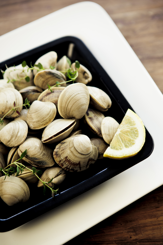clams-plate.jpg