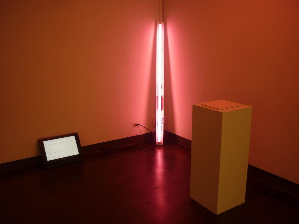 Cindy Hinant,  Grids Next Door,  Installation View at Visual Arts Gallery, New York, 2011.