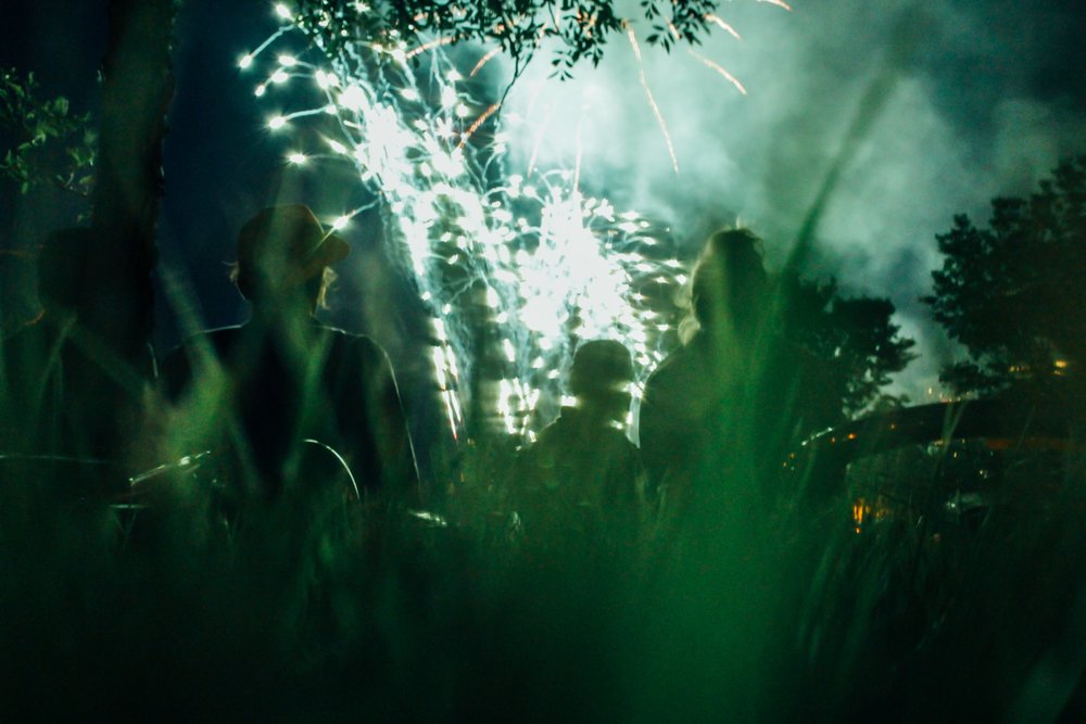 Fireworks Display with Pals Photo by Michael Benz