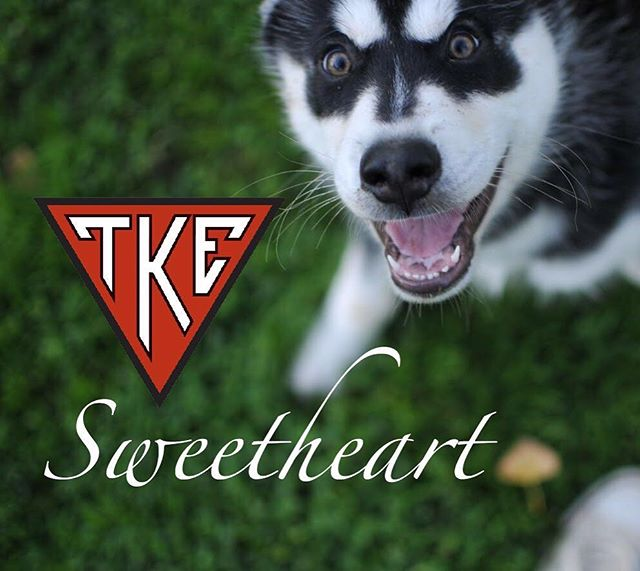 Tau Kappa Espilon's annual philanthropy TKE Sweetheart is FINALLY HERE! Throughout the week, we will be holding various competitions and events ultimately benefiting St Jude's Children's Research Hospital ❤️ Check out the link in our bio to see how you can participate in this week's events and where to find us on campus!