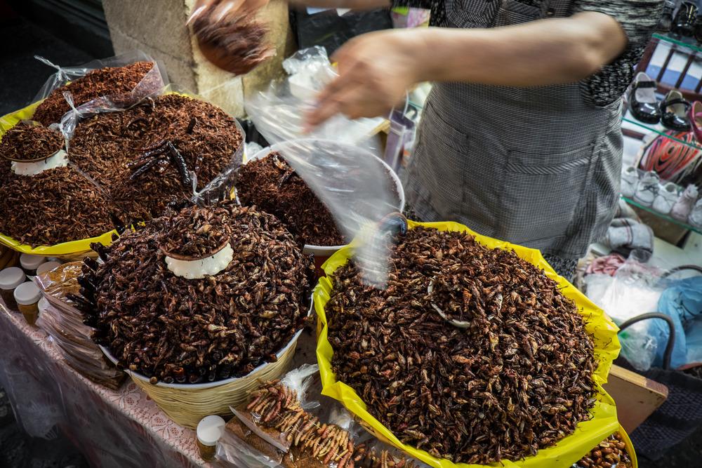 """Chapulines en el Mercado de Oaxaca"" © Jorge Villarreal"