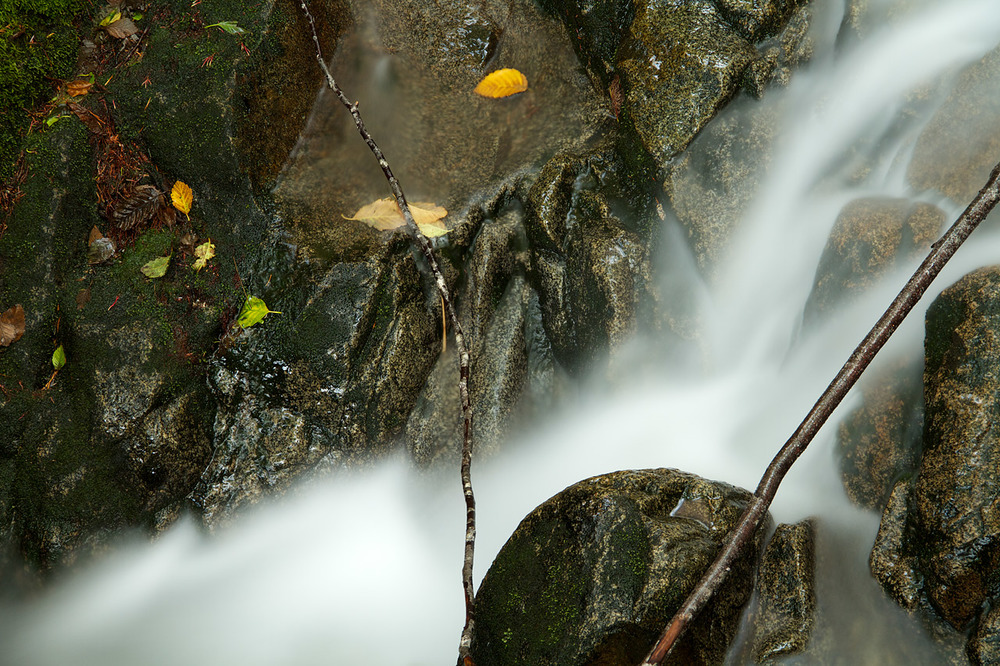Creek_Detail_North_Cascades.jpg