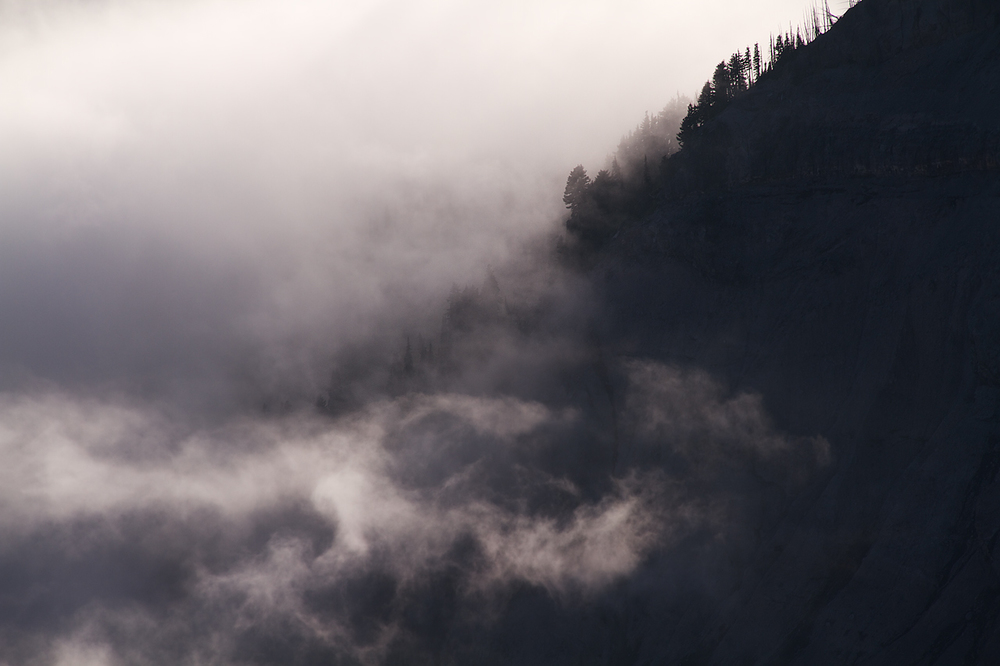 Fog_on_Mount_Rainier.jpg