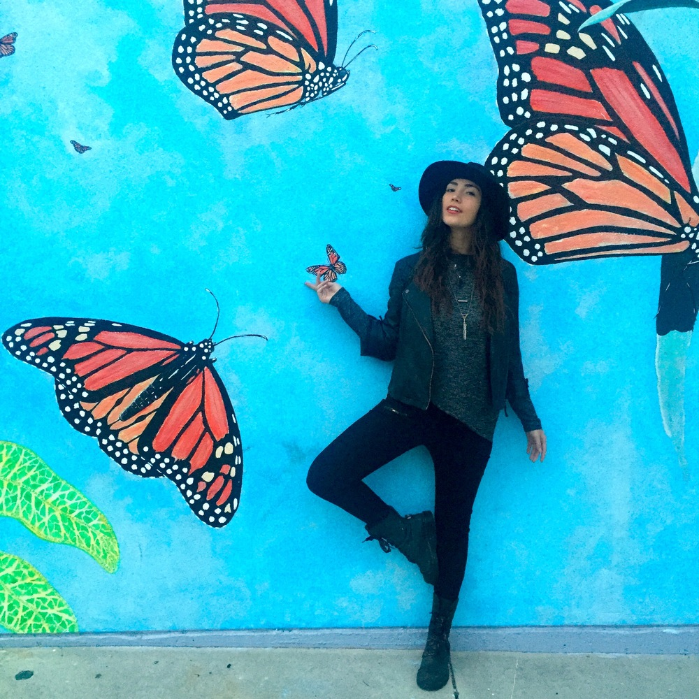 :: Butterflies in Santa Cruz ::