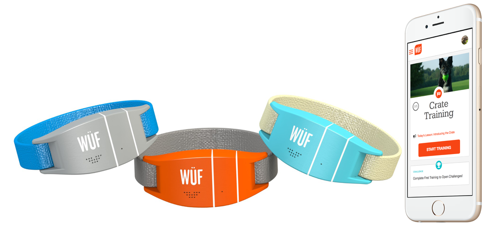 WUF Smart Collar and Mobile App