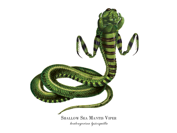 """Shallow Sea Mantis Viper"""