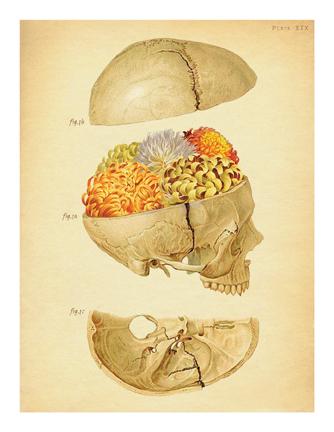 """Funerary Ritual 1 (Vampire Skull)"""