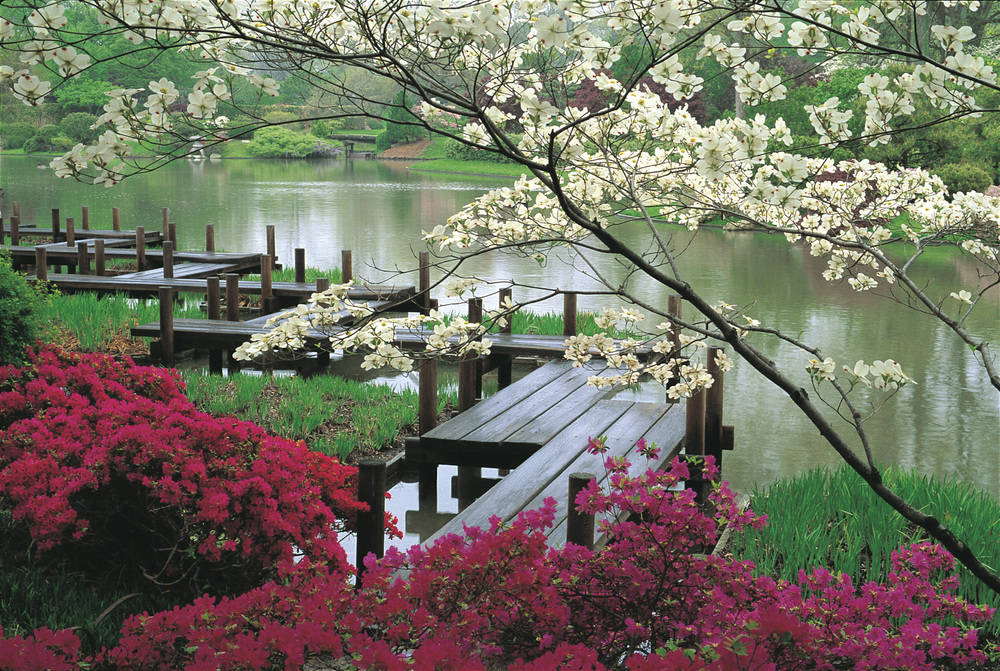 japanese-garden-jjennings-design.jpg