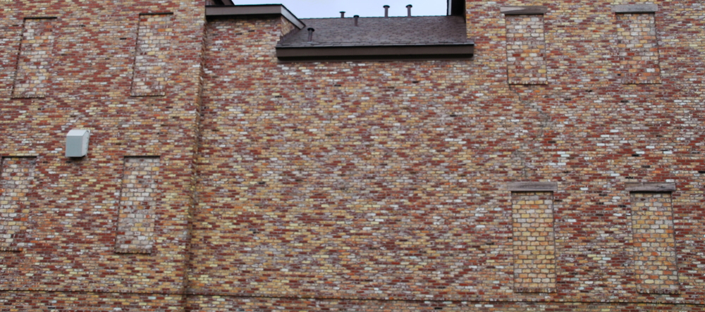 This resident bricked up all his windows to avoid the rampant crime problem.