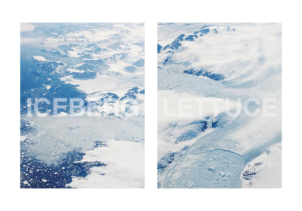 KATE OWEN | ICEBERG LETTUCE