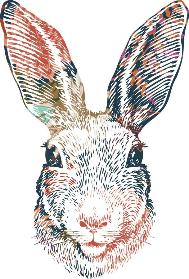 layered-bunny-web.jpg