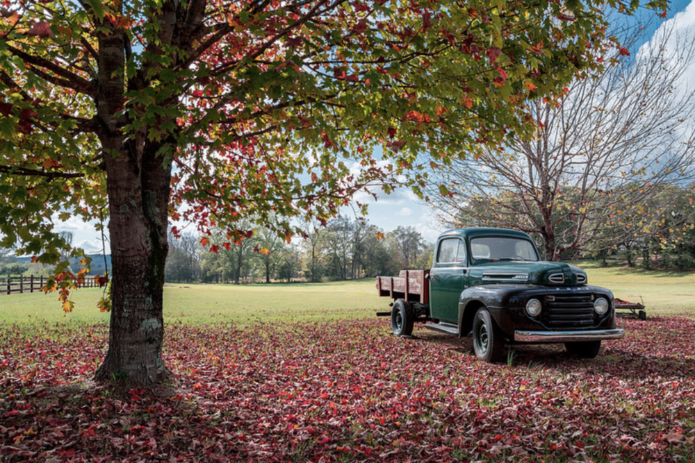 """Fall Ford,"" Jeremy Miniard (flickr)"