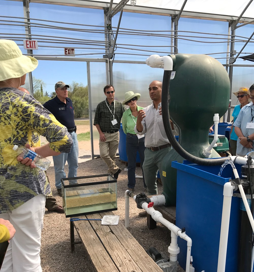 Arizona Land and Water Trust tours the greenhouse, and Chaz gives a mini-lesson on the science behind Aquaponics  -
