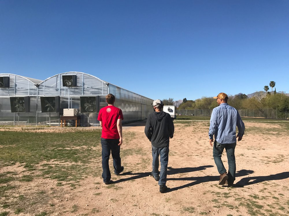 Our Greenhouse is located in Central Tucson, on the property that formerly housed Howenstine High School. Now TUSD and Merchant's Garden are collaborating to make this property also serve as a Food Education Field Trip center for Tucson Schools.