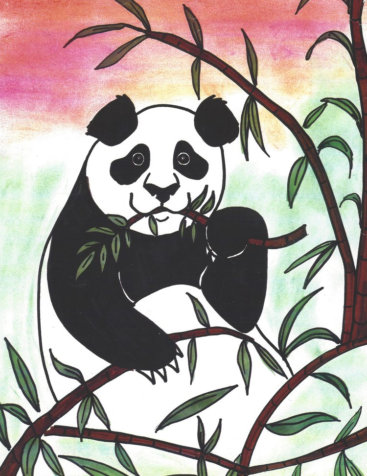 Art Theme: Pandas    Writing Theme: Creative Story