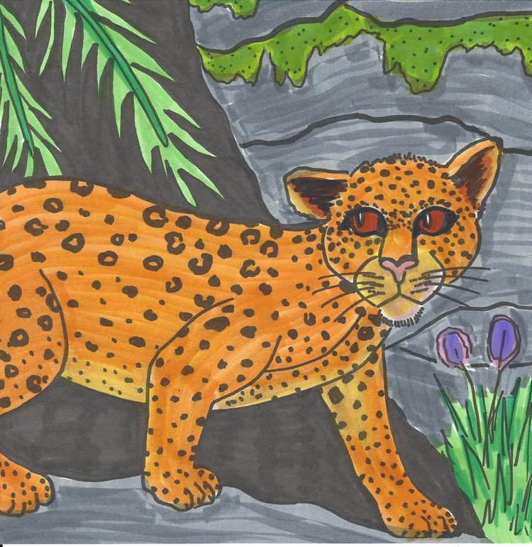 Art Theme:  Leopard    Writing Theme:  Poetry