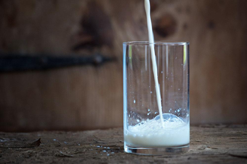 Næringsbombe.  Melk og melkeprodukter inneholder mange viktige næringsstoffer vi trenger. Foto: Pixabay