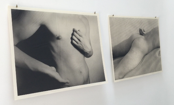 beauty revisited photogravures