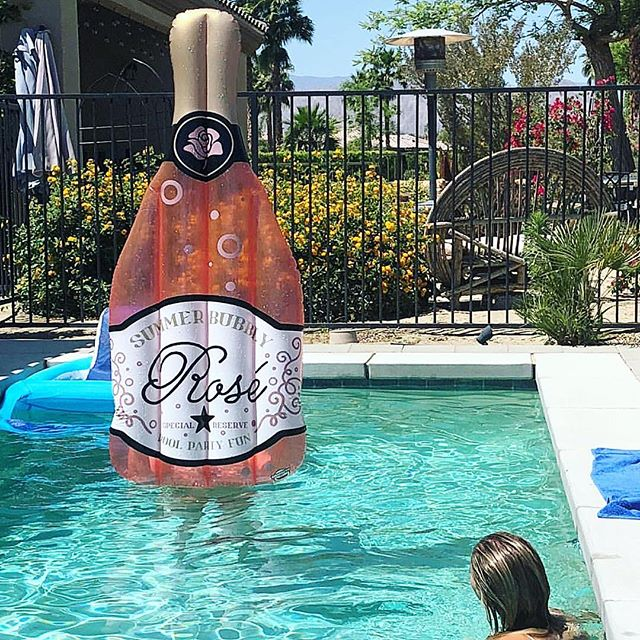 It'll still float if I fill it with rosé and insert a straw, right?? 🥤🌹🍷🍾 #askingforafriend #rosélife #roséseason @stassischroeder _____________________________________________________________ 📲👆🏼 Link to buy is in my insta story