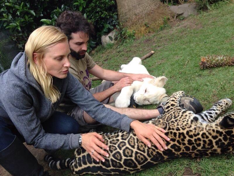 black jaguar white tiger — l♥ve1 productions and styling