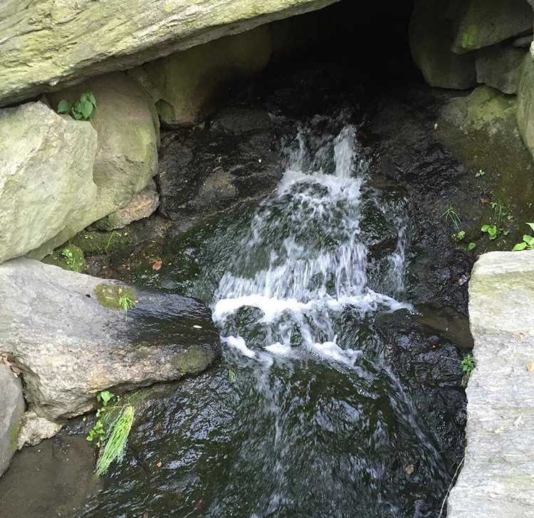 @pjp1717Our little waterfall that empties out into the Duck Pool in Central Park at West 100th Street #makingplaceuws