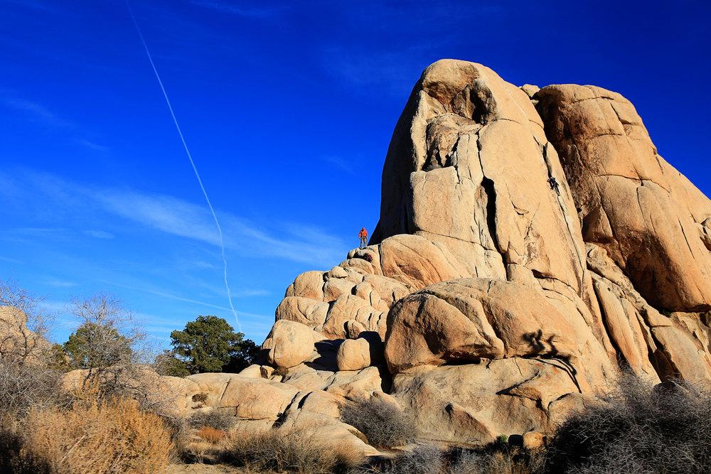 joshua tree rock climbing