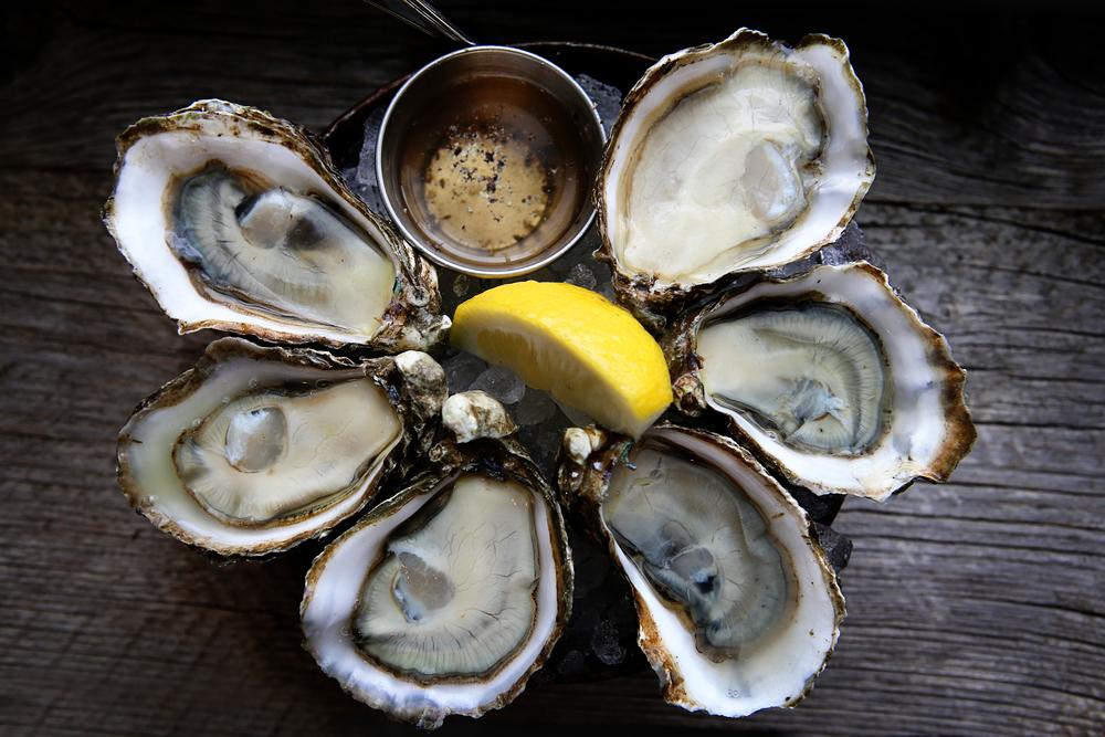 taylor shellfish