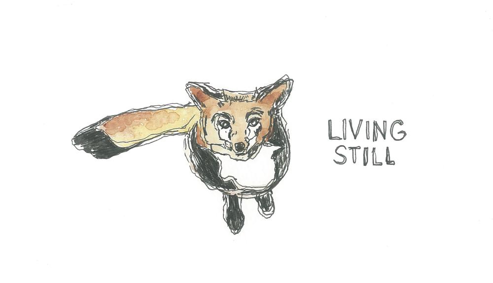 livingstill.jpg