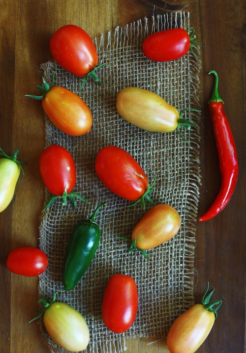 Last Garden Harvest :: Set the Table