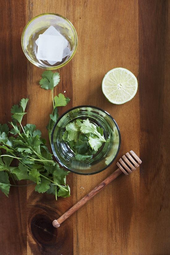 Cilantro Lime Gin Fizz Recipe | Set the Table