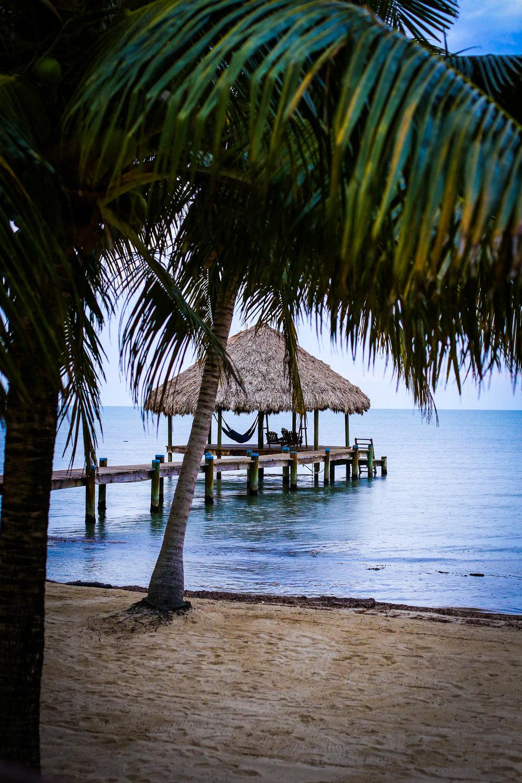 Maya Beach Hotel | Bistro