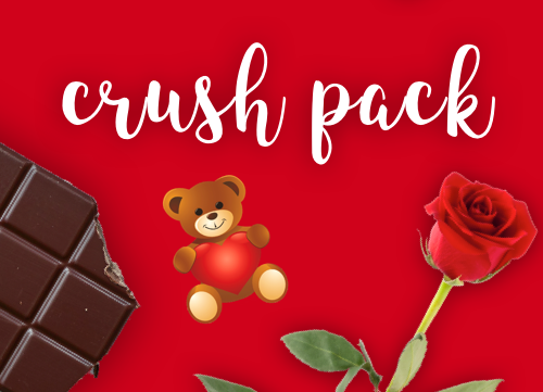 Crush Pack - $25 (or 4 for $80)   Send a message to your crush or surprise your Valentine with this hand-picked Valentine's gift bag.  Includes an assortment of chocolate (Ghirardelli, Lindt, and Ferrero Rocher), a rose, a teddy bear, and a personalized letter handwritten in calligraphy.  If you have special requests or additions to the bag, contact (908) 255-5572.