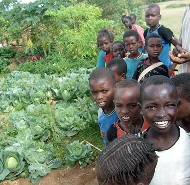 permaculture in Ethiopia (2).jpg