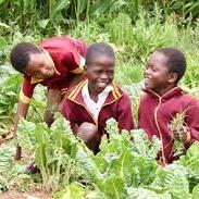 permaculture in Ethiopia.jpg